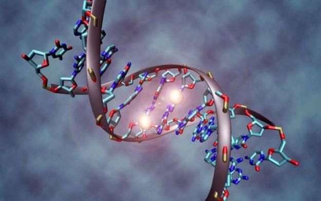 Éste es el análisis del genoma humano más detallado en la historia