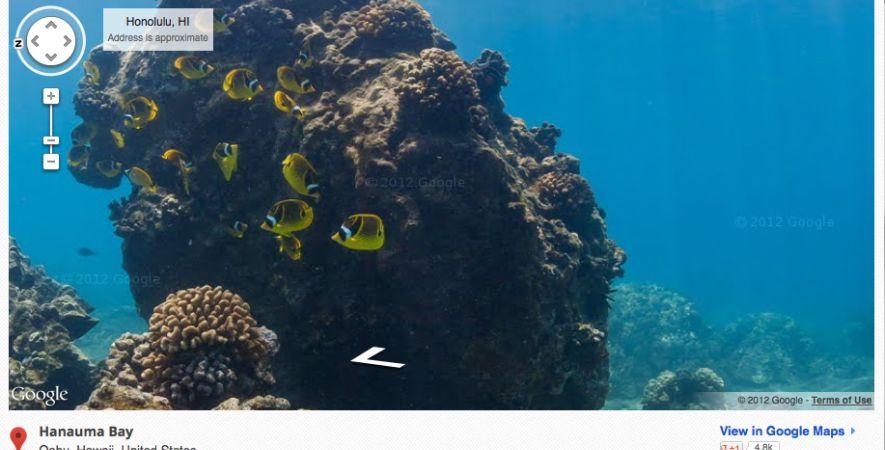 Google Street View, permite explorar sitios submarinos