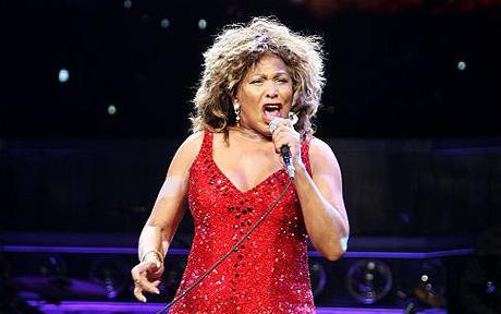 Aeropuerto usa música de Tina Turner para espantar pájaros