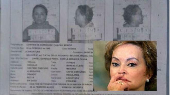 Supuesta ficha judicial de Elba Esther Gordillo