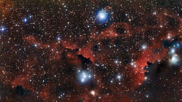 Foto: captan las alas de una 'gaviota cósmica'