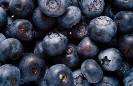 Conoce cuál es el mejor antioxidante