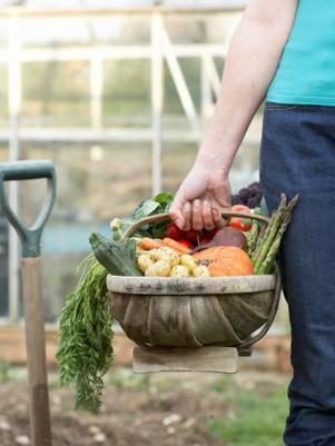 Alimentos orgánicos: Mitos y verdades