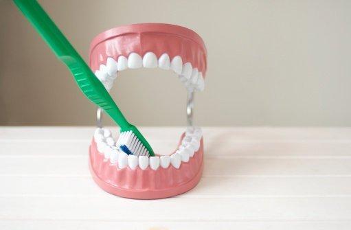 ¿Usarías una dentadura de segunda mano?