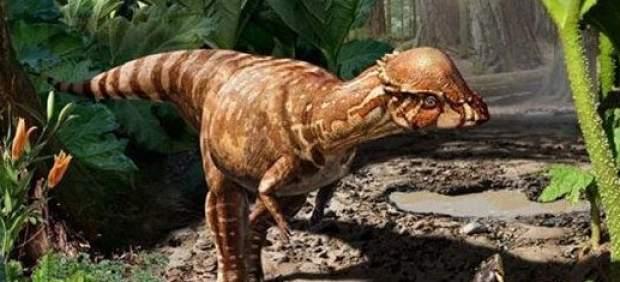 Identifican una nueva especie de dinosaurio