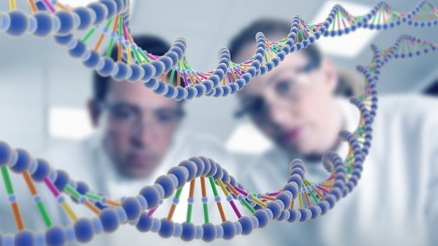 ¿Por qué los genes humanos no pueden ser patentados?