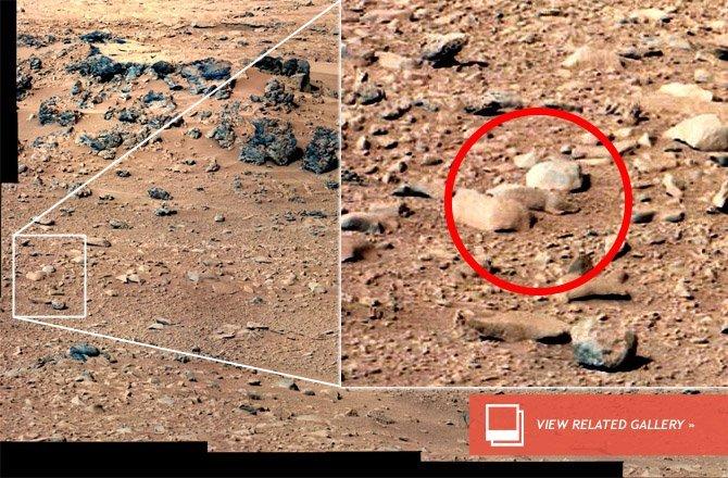Foto: Hallan una rata en Marte