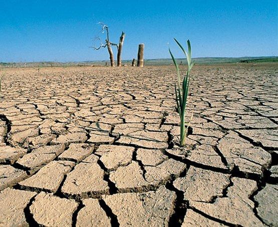 Así afecta la sequía en el mundo - Día Mundial contra la Desertificación
