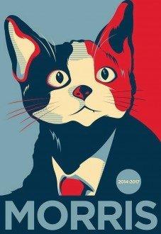 Insólito: candidato Morris tendría más votos que los partidos oficiales