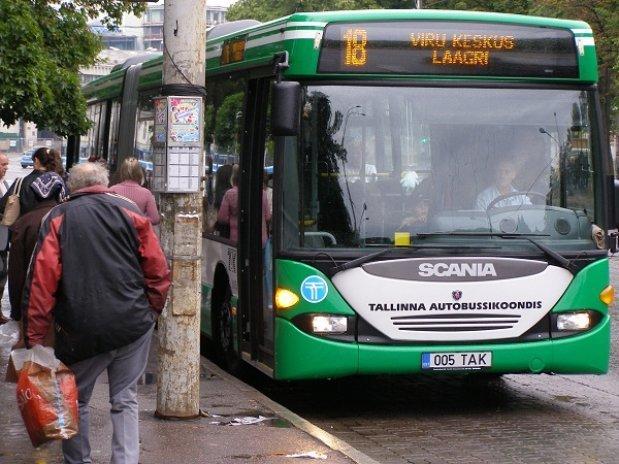 Conoce la ciudad con transporte público gratuito