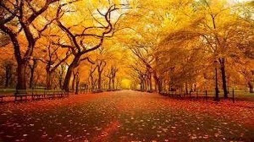 Canciones ideales para comenzar el otoño