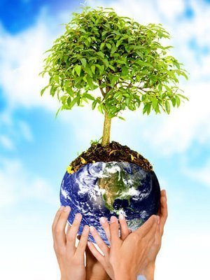 Recomendaciones para cuidar el medio ambiente