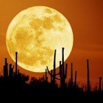 Conoce cuáles son las Lunas más bellas - Fotos