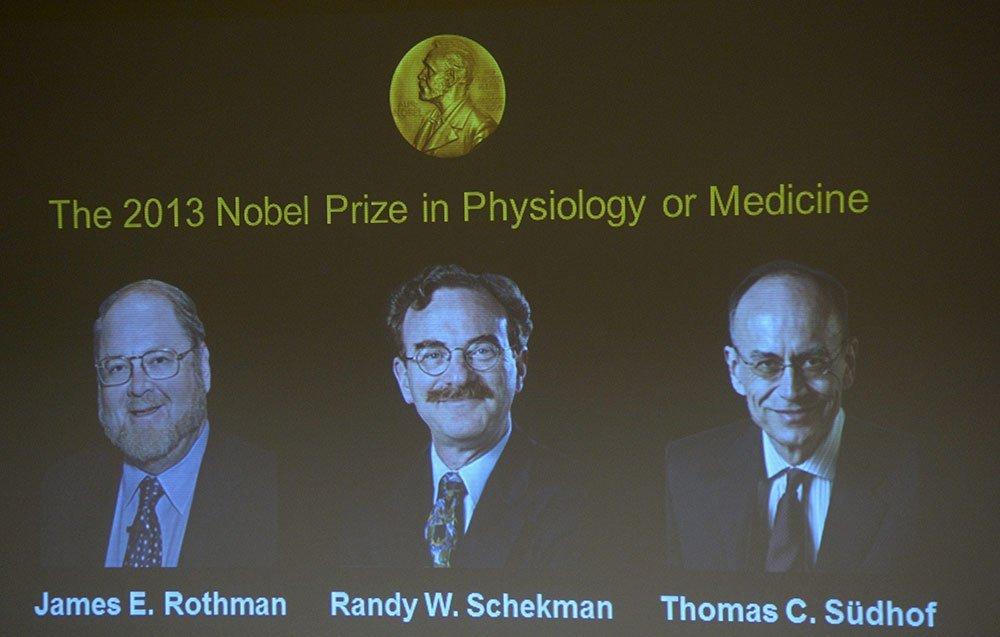 Alemania y Estados Unidos comparten el Nobel de Medicina