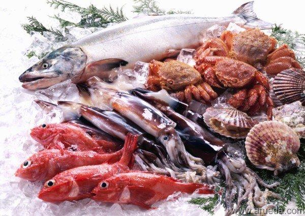 Aprende a elegir pescados y mariscos frescos
