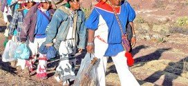 Liberan a indígenas encarceladas por posesión de peyote