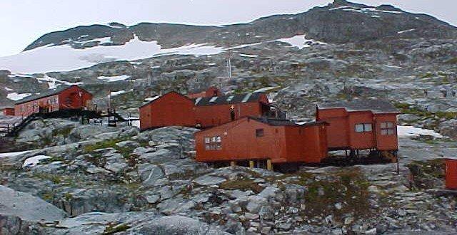 Curiosidades: Musgo retorna a la vida después de 1.500 años congelado