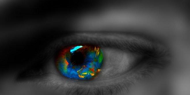 Búsqueda inversa de imágenes | Encuentra la fuente original de una imagen