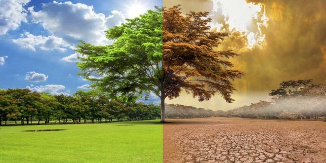 ¿Las mejores marcas del mundo financian la información errónea sobre el cambio climático?