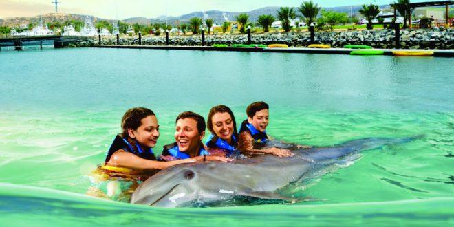 Los Cabos, un lugar para nadar con delfines